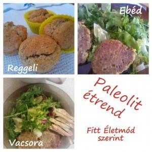 paleolit_etrend_20140201_720px
