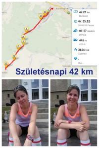 42.2km_20140620_kollazs